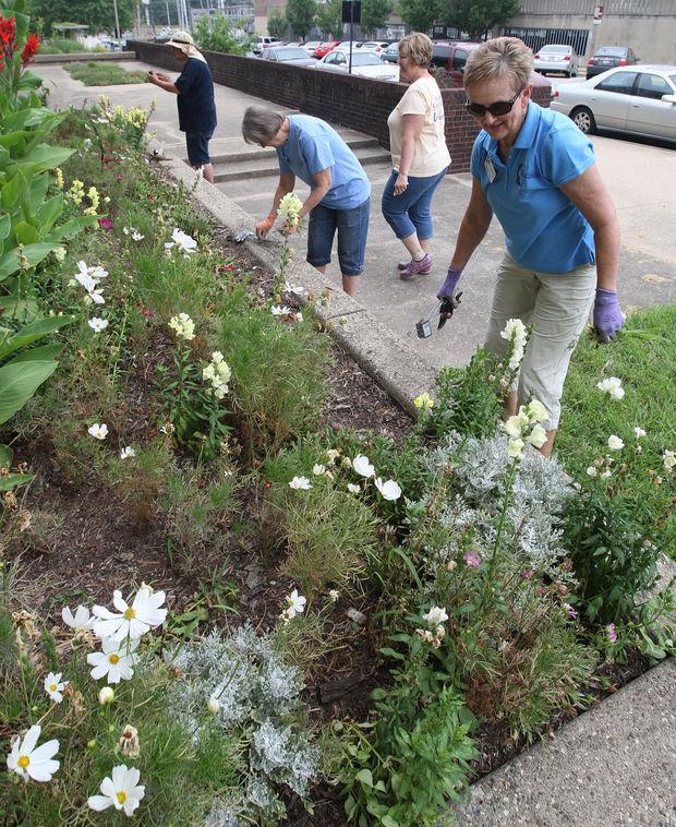 master gardener h&r